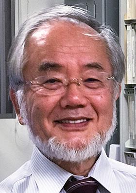 Il premio Nobel alla medicina 2016