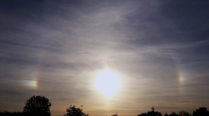 La stagione dei cani solari
