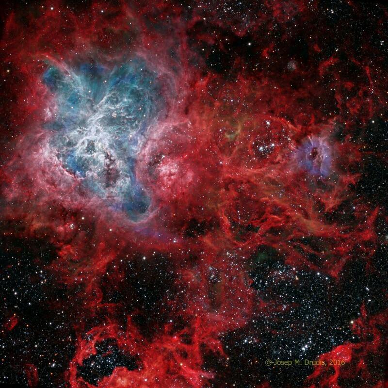 La nebulosa Tarantola è la più grande e complessa regione di formazione stellare nel vicinato galattico. Essa si trova nella Grande Nube di Magellano, a 1500 anni luce di distanza da noi ed è grande circa 1000 anni luce: ciò vuol dire che la nebulosa copre circa 30° di cielo (circa 60 lune piene). Una grandezza impressionante! Fonte: Astronomy Picture of the Day (APOD)