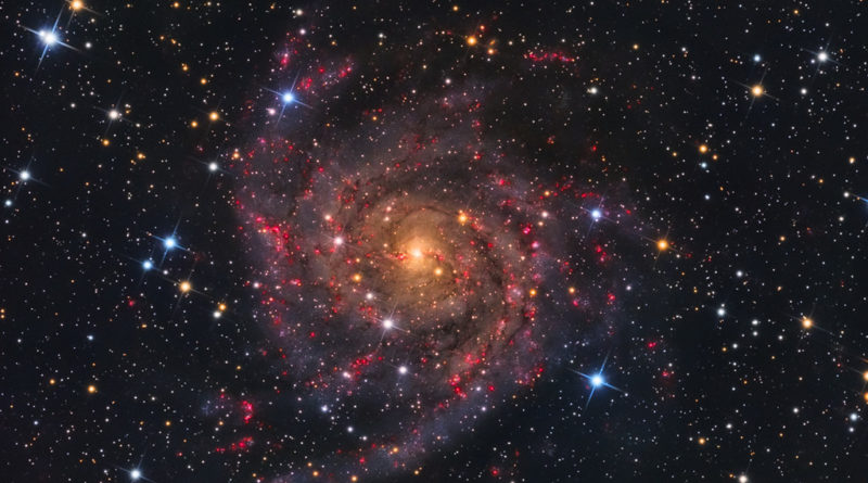 IC 342, la galassia nascosta